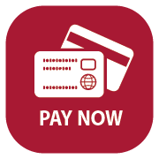 button - pay now