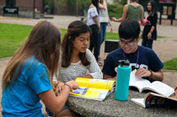 Students Studying Outside on Table
