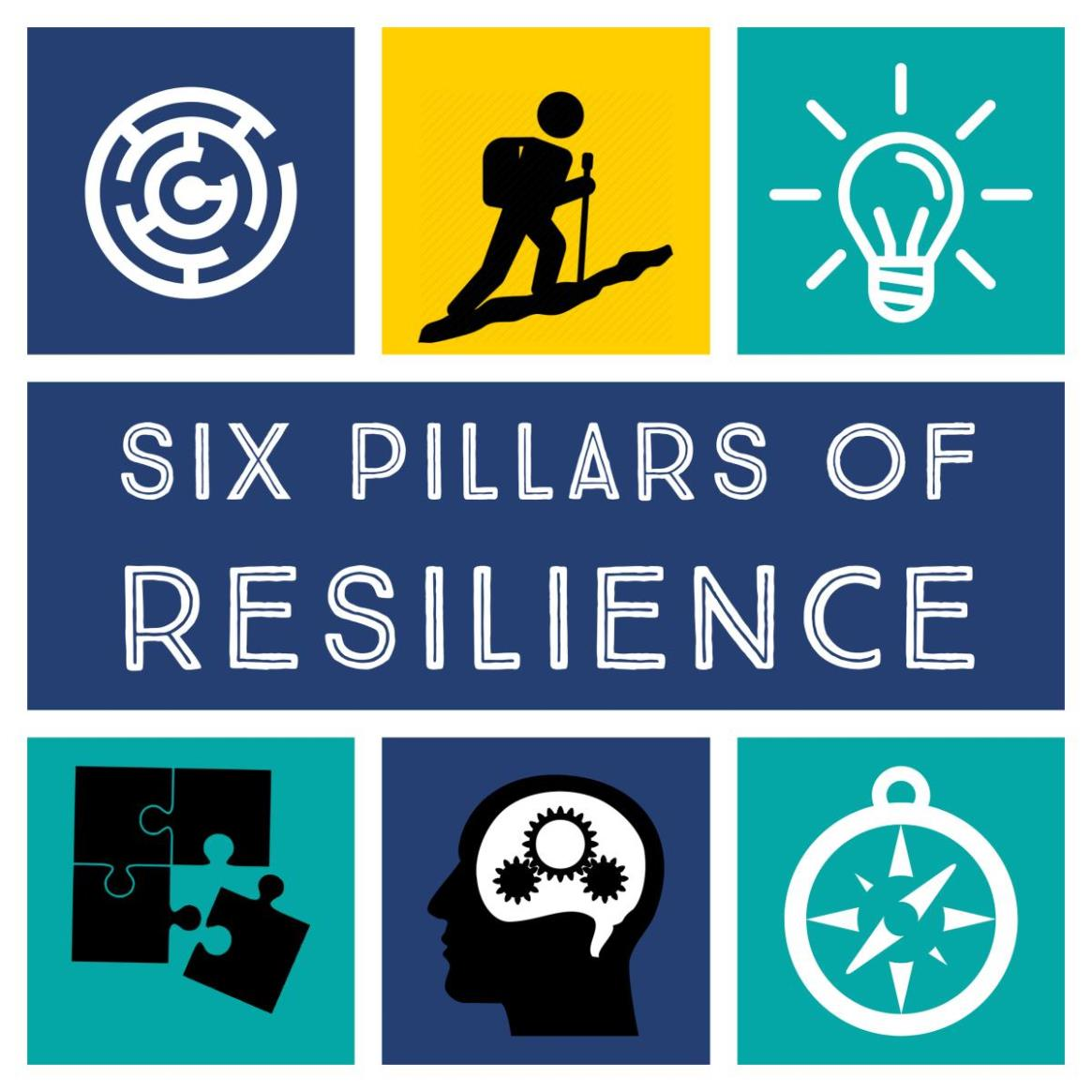 six pillars of resilience square