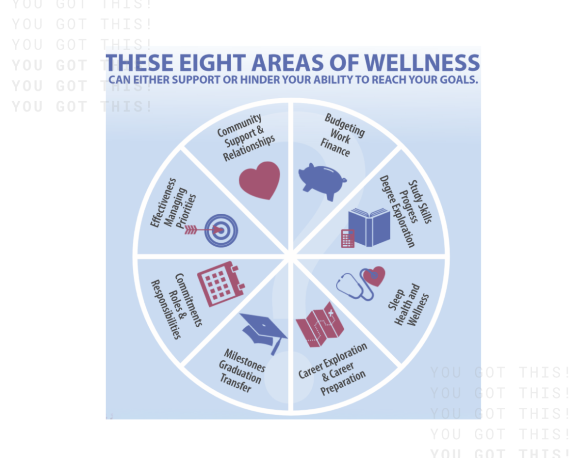 AIM Wellness Wheel