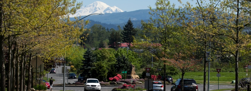 Mount Baker and roundabout