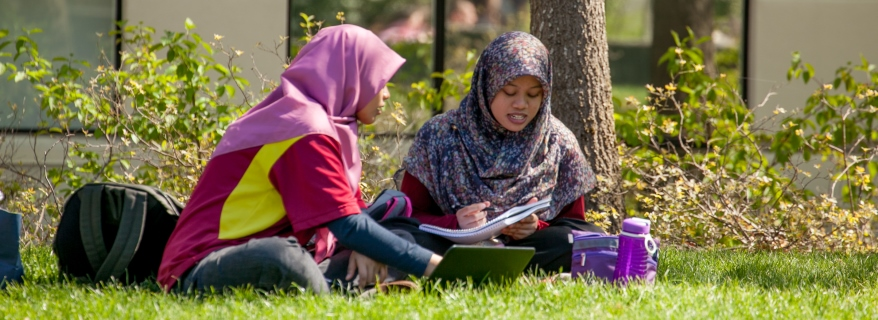 Two students studying in the grass